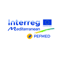 PEFMED PROJECT: CALL FOR INTEREST